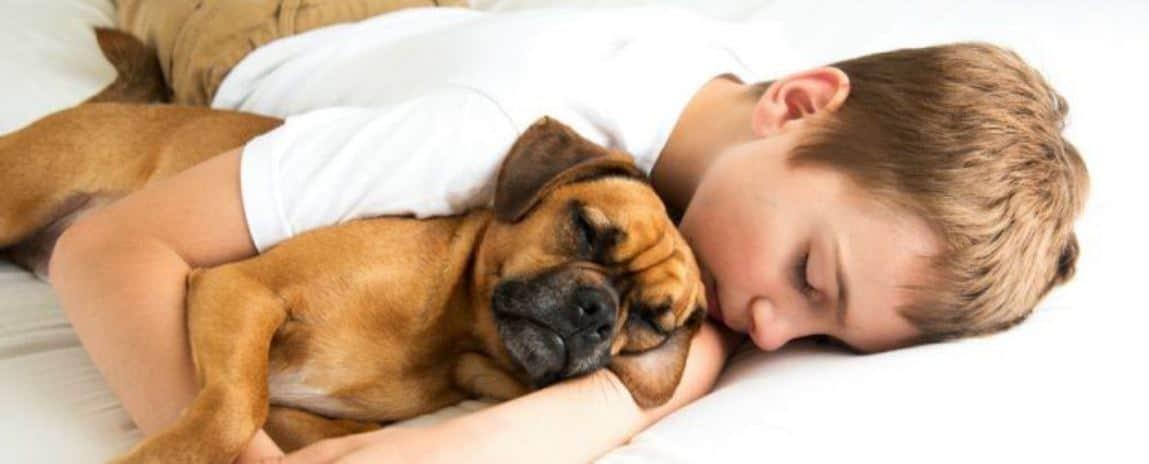 Dormir_con_tu_perro_vida_y_espacio-1